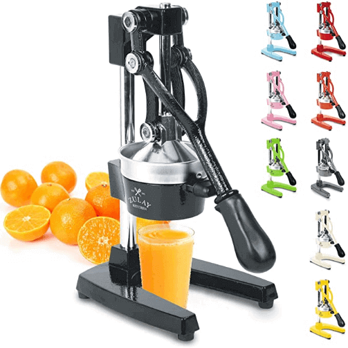 best manual citrus juicer